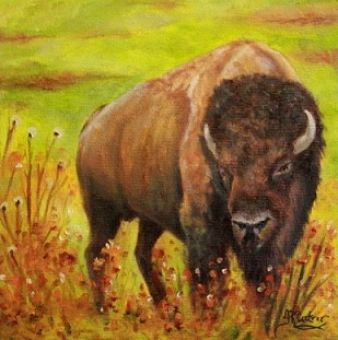 """Tatanka"", Bison or Buffalo oil painting *SOLD!"