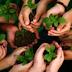 ZPP Meio Ambiente: Cuidados com a Natureza