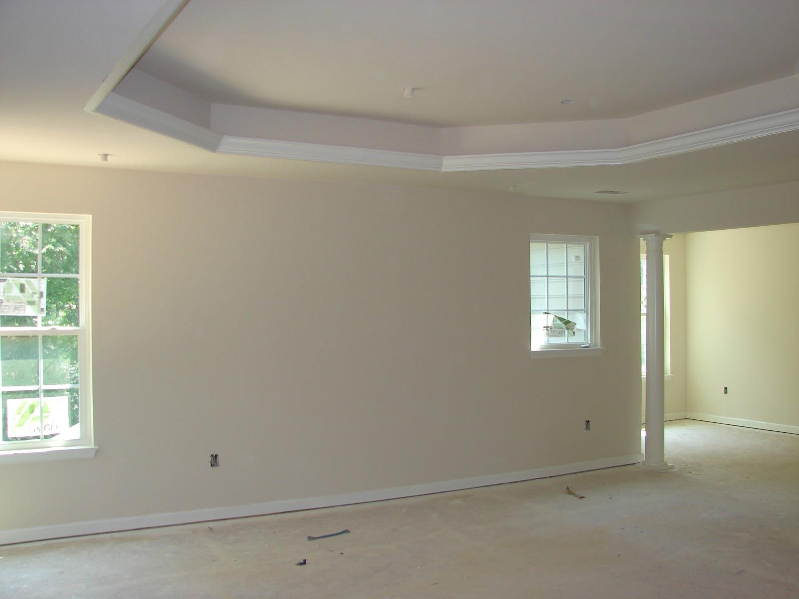 Building A Ryan Home Avalon Granite Trim Paint Amp Tons