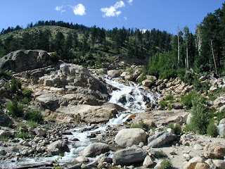 Lawn Lake Alluvial Fan, adjacent Fall River Road, Rocky Mountain N.P.