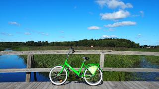 Aiguamolls i bici verda (Porvoo) per Teresa Grau Ros