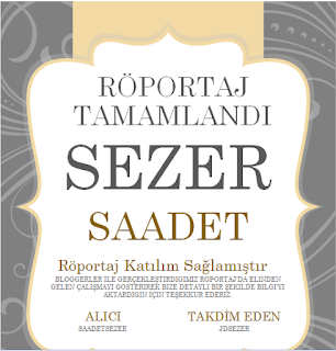 https://sezersadet.blogspot.com.tr/