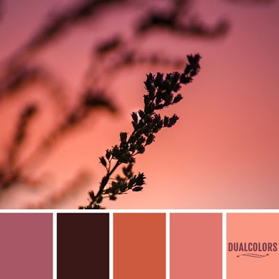 Color Paleta 157