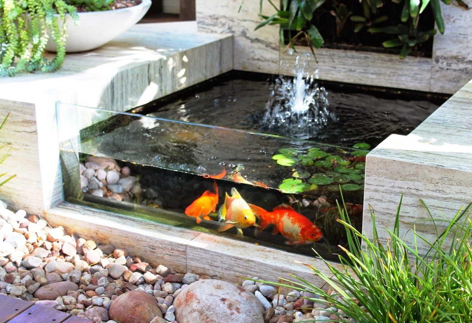 Taman Minimalis Cantik dengan Kolam Ikan