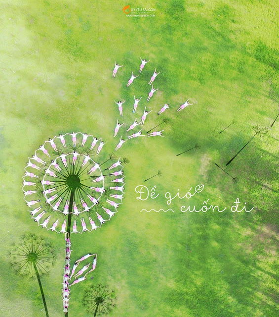 Chụp ảnh flycam
