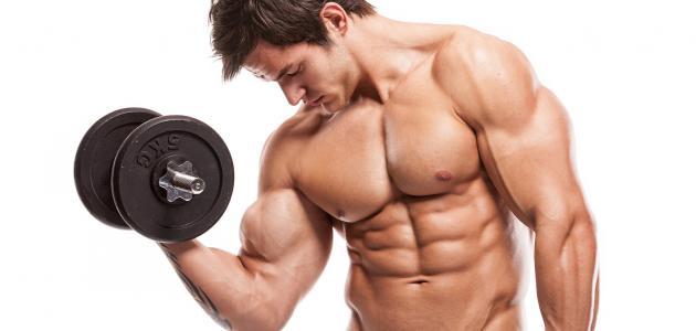 طرق التغذية والنصائح لبناء جسم قوى