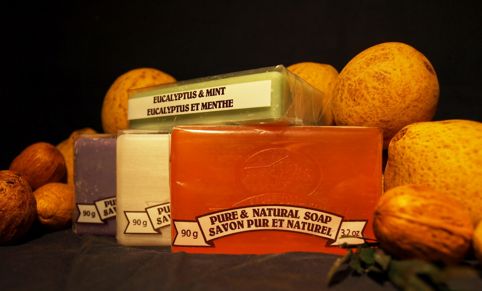 Guelph Soap Company: Measuring up Against David Suzuki's