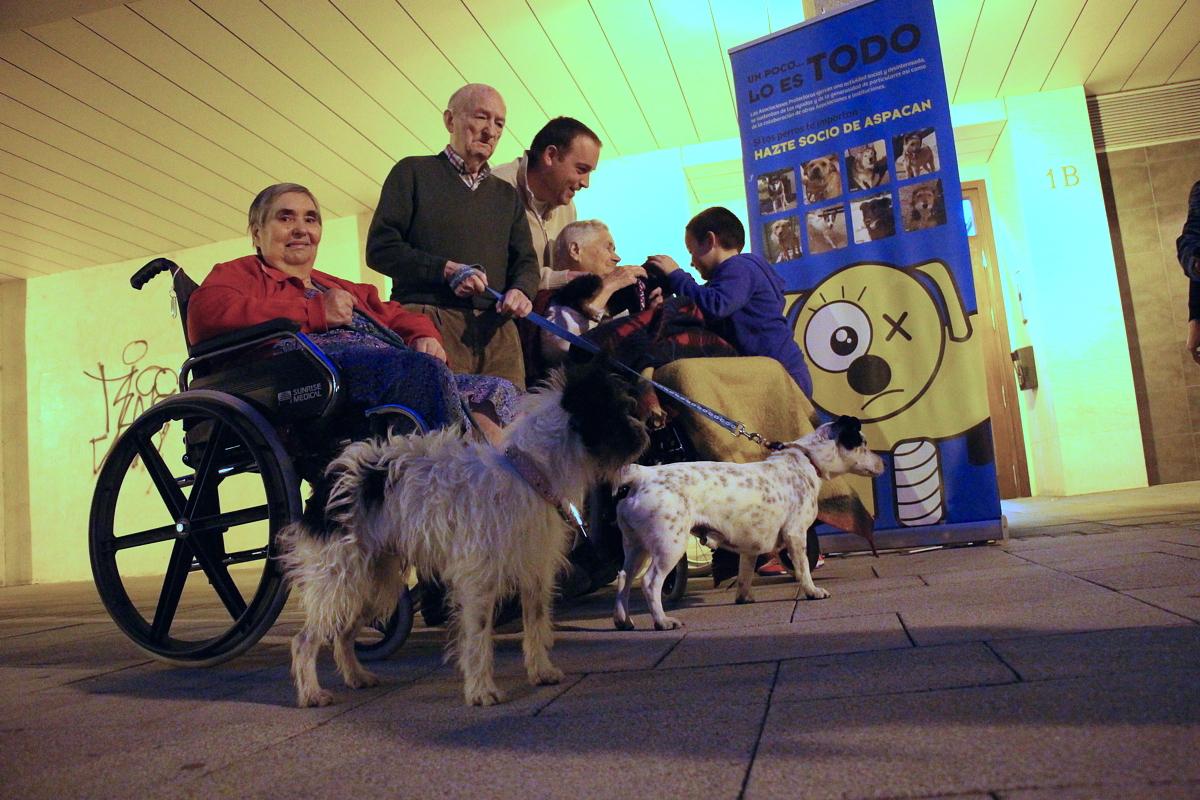 Ancianos de una residencia experimentan una jornada en contacto con perros abandonados