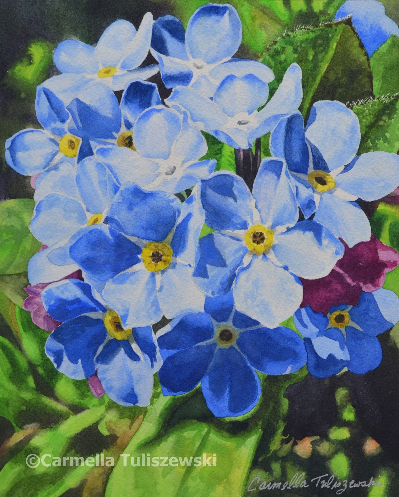 Watercolor Works: Forget Me Nots