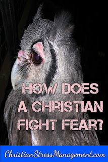How does a Christian fight fear?
