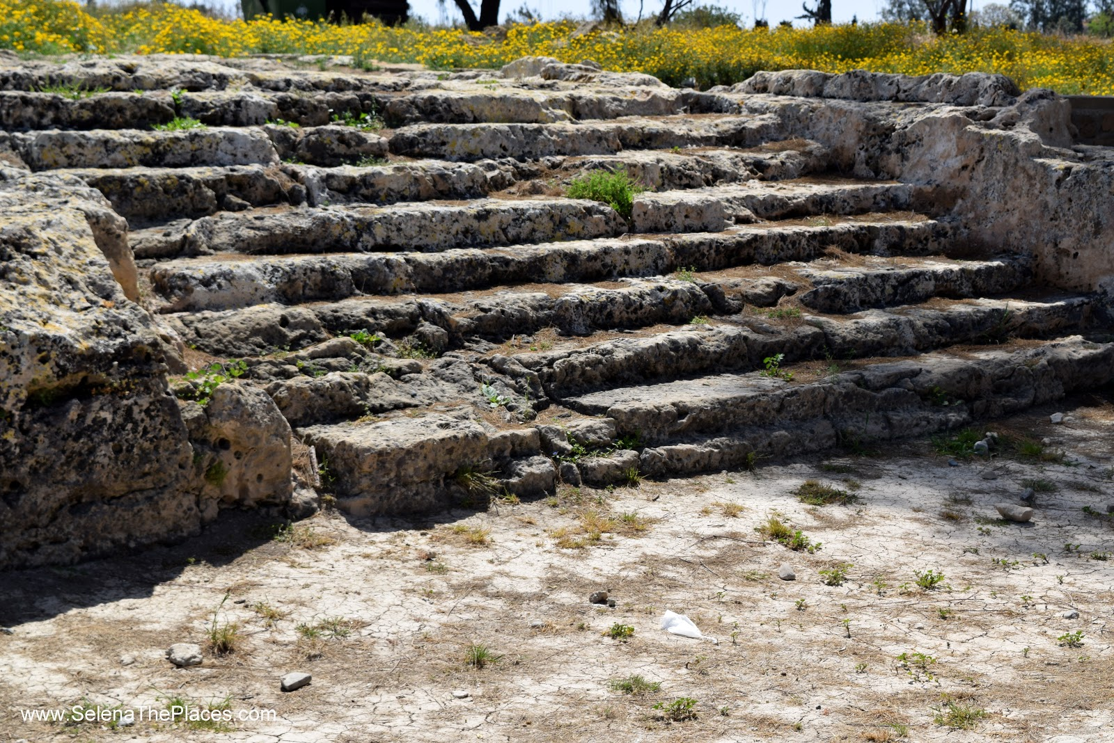 Paphos Archeoligical Site