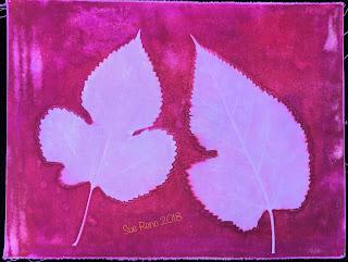 Solarfast prints_Sue Reno_ Image 25