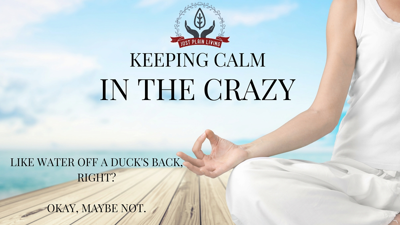 How do you keep calm when everything around you is going crazy?