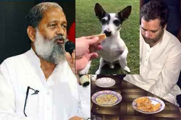 anil-vij-told-congress-workers-rahul-gandi-ka-kutta-hindi-news