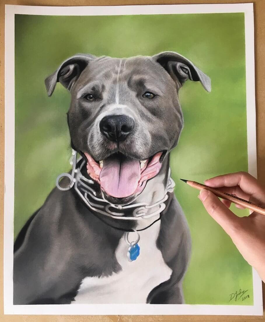 08-Bentley-the-Pit-Bull-Danielle-Fisher-Dog-Portraits-with-Pastel-Drawings-www-designstack-co