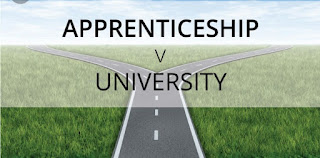 Reasons Why It Is Better to Be an Apprentice Rather Than Going to College in Nigeria