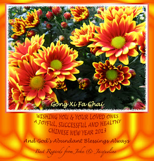 2013 Chinese New Year greeting card