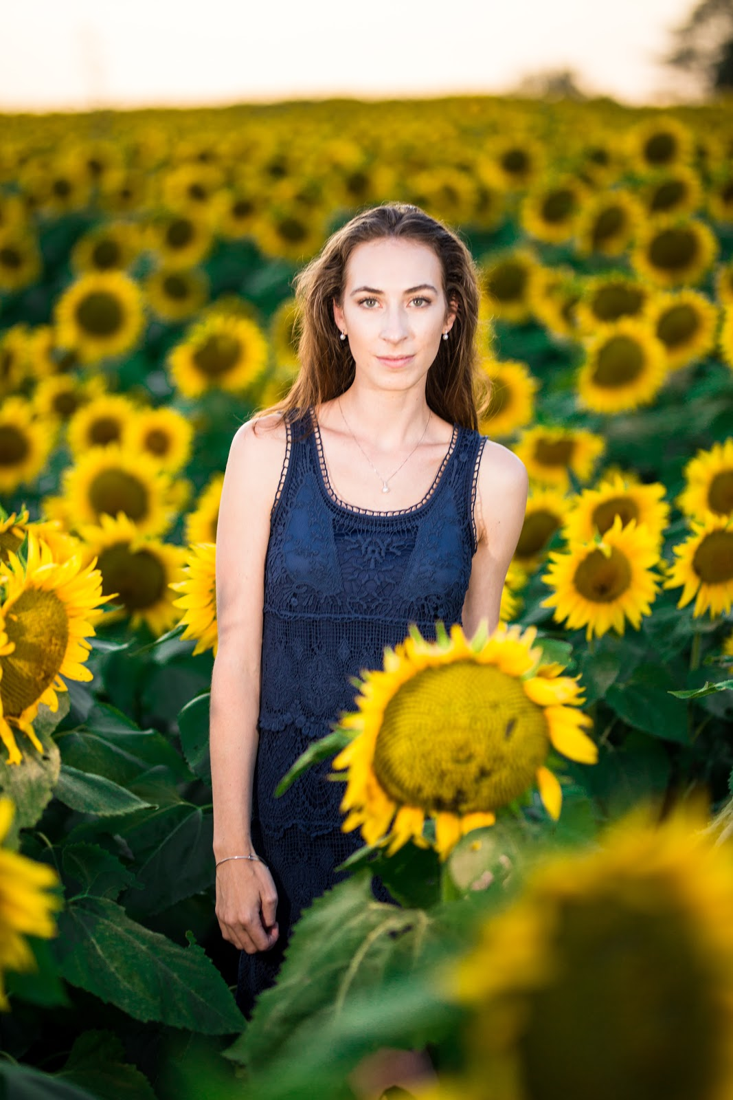 Morgan Pashen | Morgan ma Belle | Sunflower Field with eGolden Moments