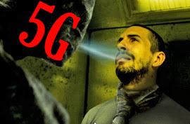 "The 5G Electromagnetic ""Mad Zone"" Poised to Self-Destruct"