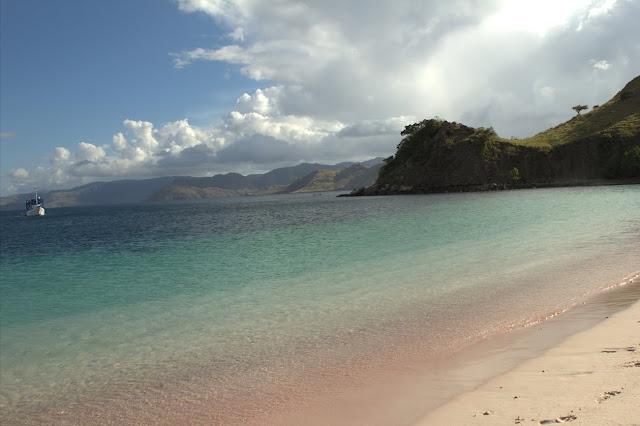 pink beach yang menawan di pulau komodo