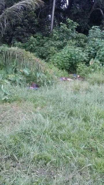 Cerita sebenar kes jumpa mayat berulat di Bachok,Kelantan.