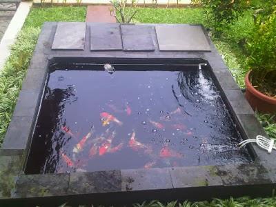Yuk, Percantik Taman Minimalis Dengan Kolam Ikan Mungil