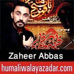 http://www.humaliwalayazadar.com/2015/10/zaheer-abbas-kazmi-nohay-2016.html