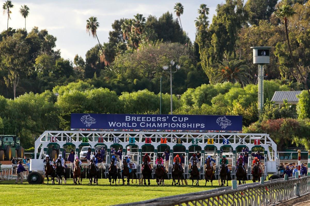 L A T I T U D E Breeders Cup 2014 At Santa Anita Park In