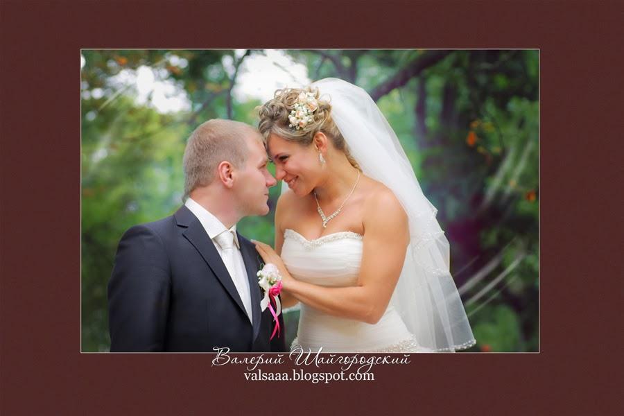 Свадебный  фотограф  чернигов