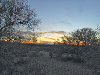 sunset in ironwood park tucson arizona on our first thanksgiving