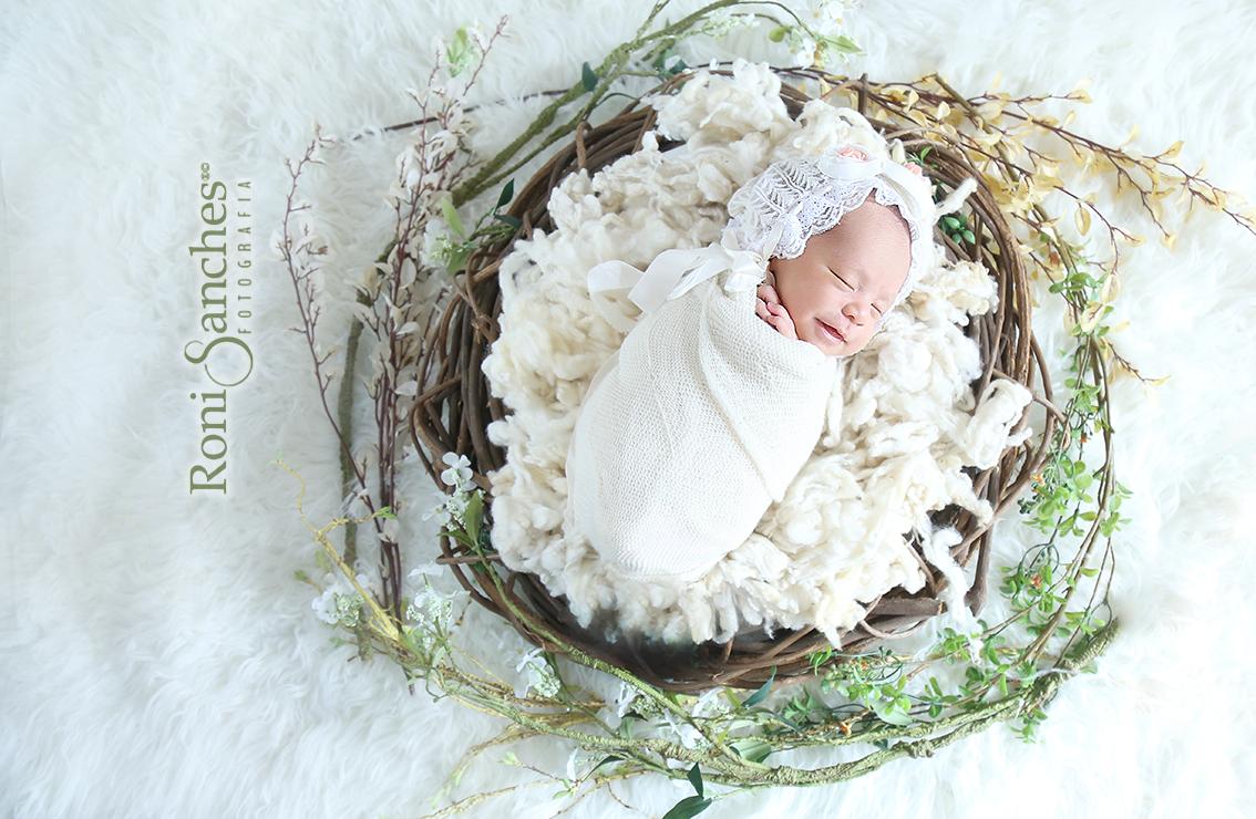 Newborn,book bebê,book newborn,foto de recém-nascido,roni sanches
