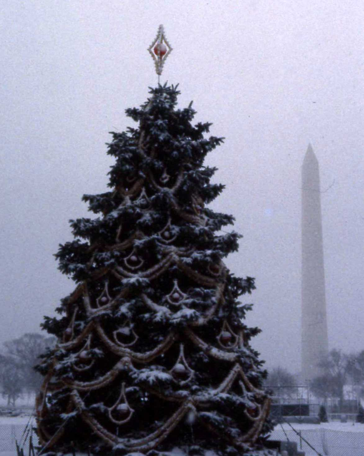 The Mathematical Tourist Christmas Tree And Monument