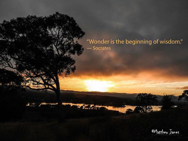 'Wonder is the beginning of wisdom' - Socrates
