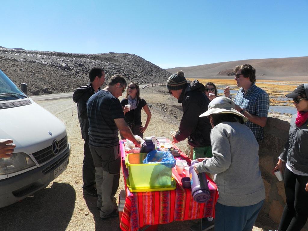 Como ir ao Salar de Tara no Atacama