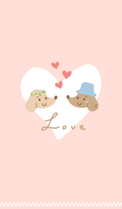 Dachshund TelTel FALL IN LOVE