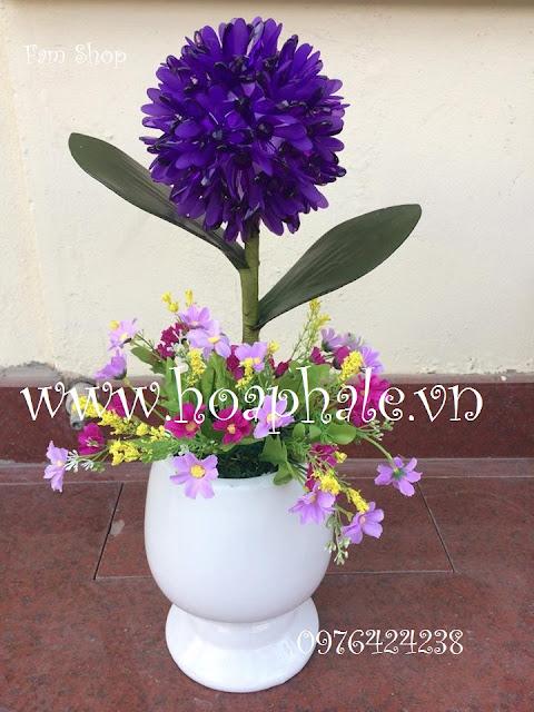 Cua hang hoa pha le o Thanh Xuan