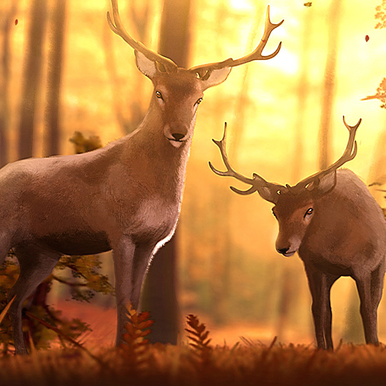 Woodland Creatures Wallpaper Engine