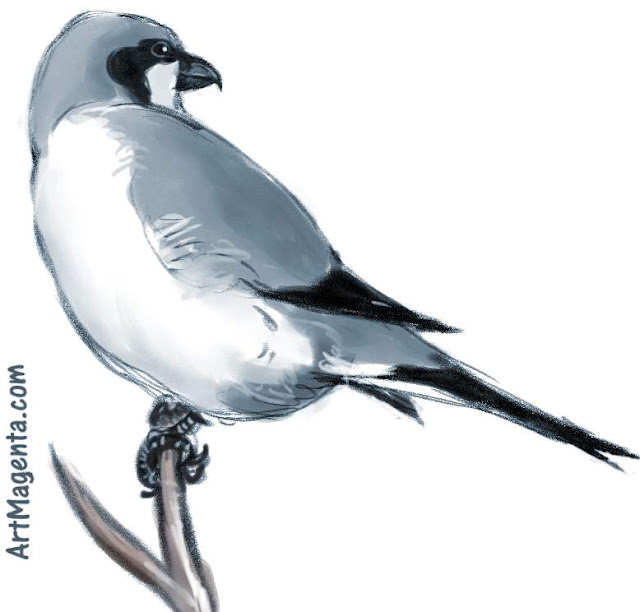 Great grey Shrike is a bird painting by artist and illustrator Artmagenta