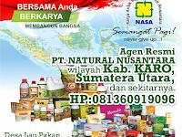 Alamat Agen Resmi Nasa Di Kabupaten Karo, Sumatera Utara