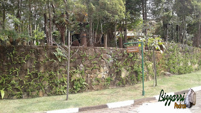 Execução de muro de pedra com pedras ornamentais com esse tipo de assentamento de pedra com junta seca sem cimento. Muro de pedra em casa em condomínio em Atibaia-SP.