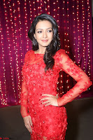 Catherine Tresa in red transparent gown at Zee Telugu Apsara Awards 2017 06.JPG