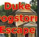 GelBold - Duke Dogstorm Escape