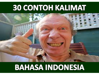 30 Contoh Kalimat Efektif dan Contoh Kalimat Tidak Efektif Bahasa Indonesia