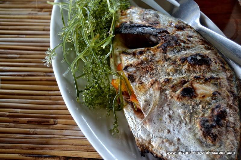 Badjao Seafront's grilled fish with lato