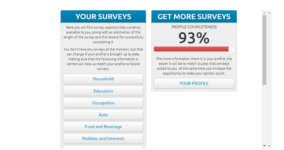 Mzansi Surveys