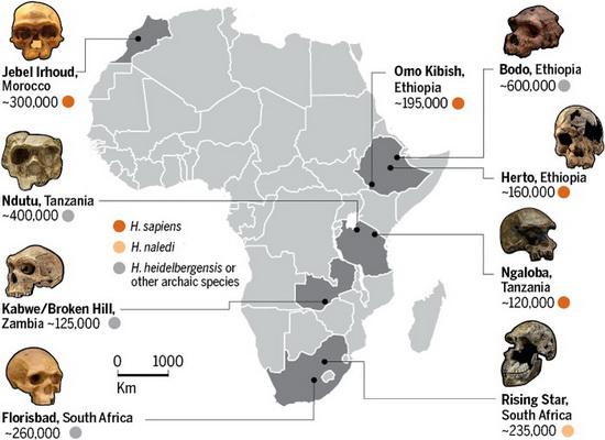 Laporan Penelitian Dating Homo sapiens Tertua di Situs Jebel Irhoud di Maroko