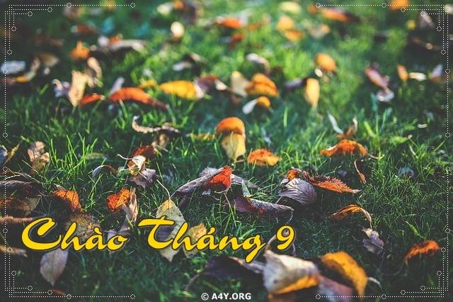 102+ Bài Thơ Viết Về Tháng 9 Mùa Thu Thật Hay, Giàu Cảm Xúc