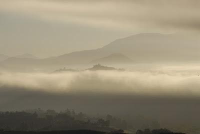 foggy mountain range: LadyD Books