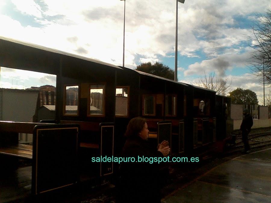 tren jardinera vapor