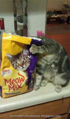 Cat food Meow Mix funny photo